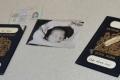 passport-bracelet-hkid