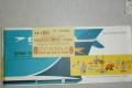 rachels-passenger-air-ticket